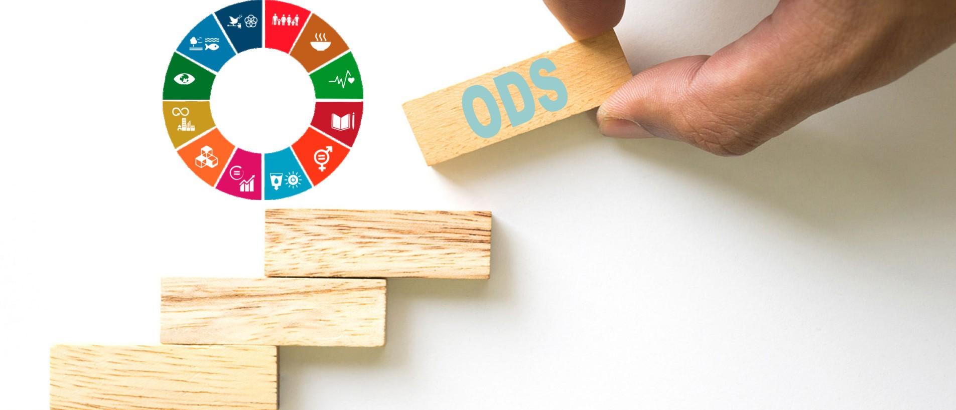 bloques de madera construcción objetivos desarrollo